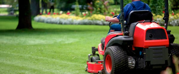 Kitchener Landscaping Services