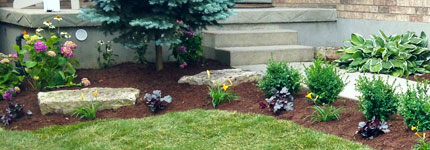 Mulch Ground Coverings