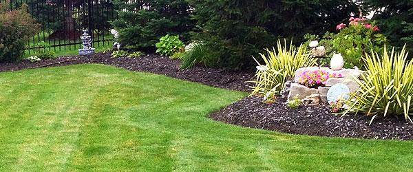 Black Garden Soil Kitchener